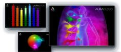 3D Female Chakra Imaging with Bio-Data Graphs