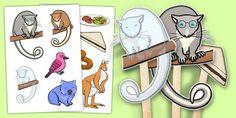 Stick Puppets to Support Teaching on Possum Magic Bush Magic Stick Puppets - australia, possum magic, bush magic Animal Activities For Kids, Animal Crafts For Kids, Preschool Activities, Mem Fox Books, Possum Magic, Magic Crafts, Australia Animals, Magic Book, Love Painting