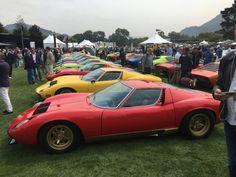 30 Lamborghini Miuras