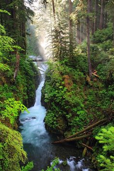 Sol Duc Falls, Washington | See More Pictures