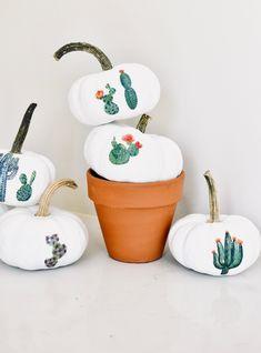 Mini Cactus Garden Pumpkins + other no carve pumpkin decorating ideas // Real Simple Types Of Pumpkins, Small Pumpkins, Mini Pumpkins, Painted Pumpkins, Halloween Pumpkins, Fall Halloween, Halloween Crafts, Halloween Decorations, Yard Decorations