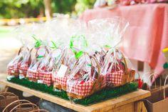 festa infantil picnic mel mai portugal inspire-4