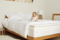 mattress cleaning gold coast stain busters carpet cleaning gold coast