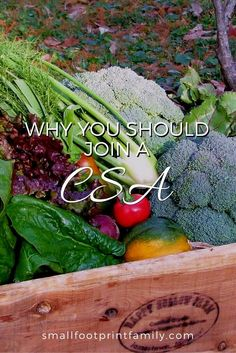 What is Community Supported Agriculture? It's an increasingly popular way to buy local, seasonal—often organic—food directly from a farmer at a great price. Here's how to find a CSA in your community. #greenliving #ecofriendly #sustainability #naturalliving #gardening #organicgarden #permaculture #homesteading #organicfood #smallfarms #localfood #localfarms #locallygrown #CSA