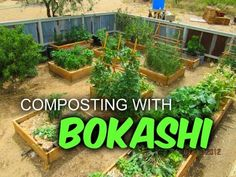 Bokashi Composting: Interview with Morgan Coffinger - YouTube