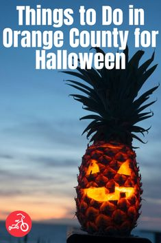 Halloween events in Orange County for kids boast tons of Halloween activities, things to do and spooktacular fun for the whole family. Halloween Lanterns, Halloween Decorations, Beach Decorations, Halloween Activities, Happy Halloween, Carving Pineapples, Life In Paradise, Tropical, Most Beautiful Beaches