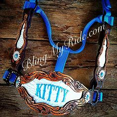 Kitty's new blingmyride halter! What a fabulous company to have available to all of us in the horse industry! Those looking for custom tack check them out www.blingmyride.com