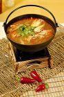 Čínská kuřecí polévka