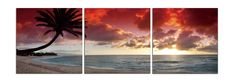 Triptych Photography is a powerful medium for all genres of Photography. We feel that the 3 panel triptych display method is the best methods for home decor.