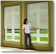 Hunter Douglas roller shades - Beautiful with big windows to filter sunlight but maintain a nice view