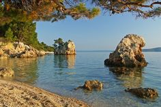 Croatia Best Beaches Guide - Europe Zlatni Rat (Golden Horn) beach, Brac Island, Croatia, Europe Croatia's best beaches Along Croatia's 800 km coastline - including 246 islands - the most photographed and popular beach is Zlatni Croatia Pictures, European Countries, Travel Activities, Eastern Europe, Scenery, Around The Worlds, Island, Landscape, Beach