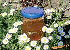 Sirup ze sedmikrásek Czech Recipes, Dieta Detox, Home Canning, Drink Bottles, Sweet Recipes, Smoothie, Food And Drink, Homemade, Cooking