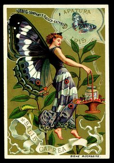 Liebig S265 Butterfly Girls 4, German edition, 1890.