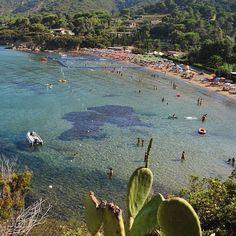 La spiaggia di #straccoligno a #capoliveri nello scatto di @photo_passion91. Continuate a taggare le vostre foto con #isoladelbaapp il tag delle vostre #vacanze all'#isoladelba. http://ift.tt/1NHxzN3