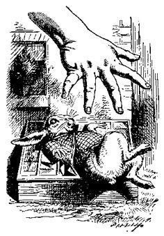 Mano De Alicia Cogiendo Al Conejo