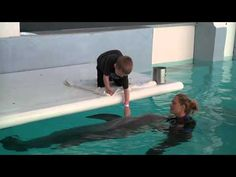 Travis Carpenter is a young boy with a genetic condition called Neurofibromatosis. Watch as Travis' eyes light up during an awe-inspiring encounter with Winter the dolphin.