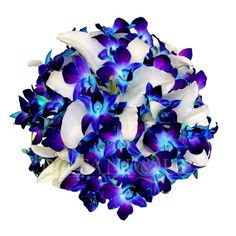 Blue Orchid Posy Wedding bouquet- Botanique Wedding Florists Gold Coast | Gold Coast wedding Florists Botanique
