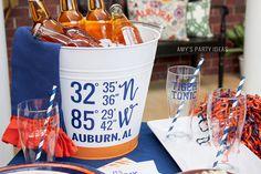 Auburn Univeristy Lo