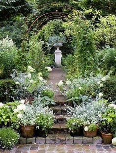 exquisite garden with potted plants