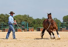 Training Tip of the Week: Lunging for Respect – troubleshooting a hot, nervous horse and a lazy horse