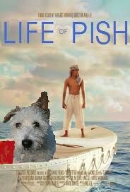 The Life of PISH Oscars 2013, Famous Books, Funny Stuff, Author, Friends, Dogs, Life, Funny Things, Amigos