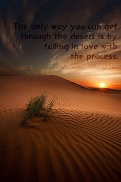 The only way you can get through the desert is by falling in love with the process. -Damon Thompson