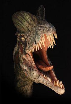 "saddinosaurfacts:  DILOPHOSAURUS""Two-crested lizard""Early..."