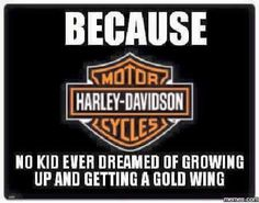 Harley Davidson News – Harley Davidson Bike Pics Harley Davidson Kunst, Motos Harley Davidson, Motor Harley Davidson Cycles, Biker Quotes, Motorcycle Quotes, Biker Sayings, Gangster Quotes, Funny Motorcycle, Hd Fatboy