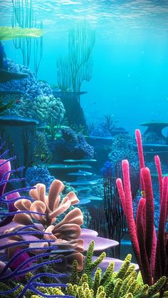 Vista do mar Underwater Creatures, Ocean Creatures, Underwater Drawing, Beautiful Sea Creatures, Ocean Scenes, Sea And Ocean, Under The Ocean, Sea Art, Fantasy Landscape