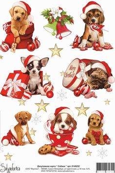 Dog And Puppies With Captions Alexey Salvadorica.Dog And Puppies With Captions Alexey Salvadorica Christmas Rock, Homemade Christmas, Vintage Christmas, Christmas Crafts, Merry Christmas, Christmas Decorations, Christmas Ornaments, Christmas Card Pictures, Christmas Pictures