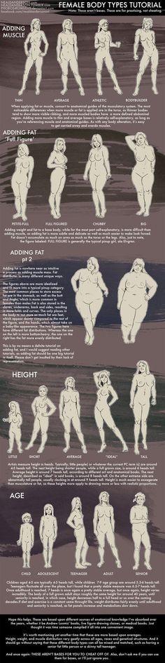 Female Body Types Tutorial by Phobos-Romulus on DeviantArt: