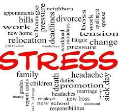 Commonly missed health conditions: High Cortisol Levels Work Related Stress, Work Stress, Coping With Stress, Stress Free, How To Relieve Stress, High Cortisol, Natures Sunshine, Natural Stress Relief, Work Family