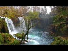 Buy Waterfall In The Park by okanakdeniz_new on VideoHive. Dreamy place, waterfall in the park video The place is in Turkey, Antalya. Please rate:) Singer, Songwriter, Composer. Calming Songs, Relaxing Gif, Town And Country, Antalya, The Great Outdoors, Waterfall, Park, Places, Nature