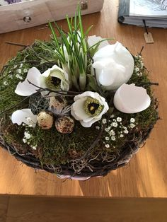 Spring Time, Succulents, Easter, Holidays, Table Decorations, Holiday Decor, Plants, Holidays Events, Easter Activities