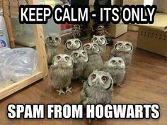 Keep Calm - It's only Spam from Hogwarts