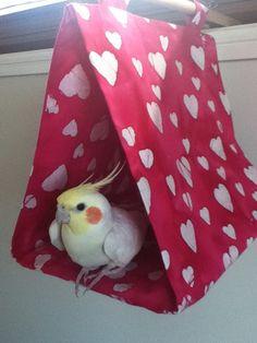Hanging Bird Tent (Medium) - by Miss-Dottie on madeit