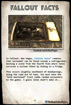 Fallout Facts