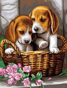 Cross Paintings, Dog Paintings, Benfica Wallpaper, Arte Zombie, Cute Puppies, Cute Dogs, Paint Set, Paint By Number, Flower Basket