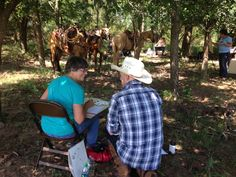 Equine Art Retreat at Island Guest Ranch in Oklahoma with Tony O'Conner resident artist.