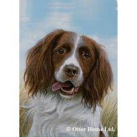 English Springer Spaniel Flag - http://www.pet360.com/dog/breeds/all-about-polish-lowland-sheepdogs/pCub_DsSqkyFDy8NWJUKyA?utm_source=freekibble&utm_medium=freekibble&extcid=fkib