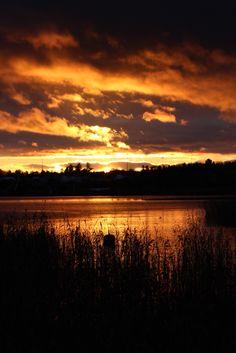 #visithelsinki #helsinkiwildfoods #outdoorlife #sunset