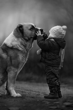 The most loyal friend and family member you will ever have in life. #bestfriends #kids #children #friendship #protection #animals #dogs #love #friends #beautiful #memories #cute #family #loyalty #protection