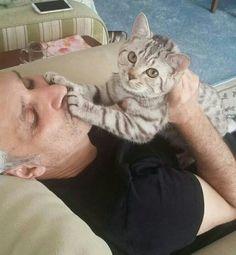 Funny cats. Don't kiss me. Öptürmem