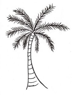 2 Trees Etc In 2019 Tree Drawing Pretty Outline Of . Palm 2 Trees Etc In 2019 Tree Drawing Pretty Outline Of palm tree drawing - Drawing TipsPalm 2 Trees Etc In 2019 Tree Drawing Pretty Outline Of palm tree drawing - Drawing Tips Tree Trunk Drawing, Tree Drawing Simple, Palm Tree Sketch, Tree Sketches, Palm Tree Outline, Drawing Tips, Drawing Drawing, Drawing Ideas, Vegetable Coloring Pages