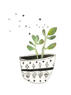 Succulent No. 1