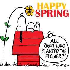 Snoopy wishes a happy Spring!
