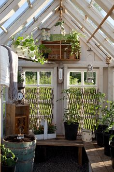 I like the trellis idea in front of the windows