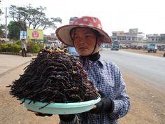 vendeuse d'araignées frites au Cambodge