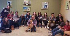 Teens help homeless pets