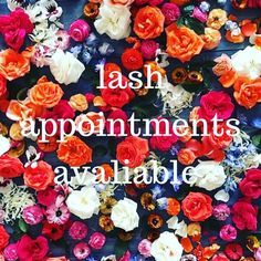 I have some openings this week, call and schedule your lash appointment today! #shavasana #shavasanaeyelashextensions #lashes #lashextensions #appointmentsavailable #grandjunction #cameosalongj #cosmetology http://tipsrazzi.com/ipost/1511041962172944184/?code=BT4TKikBw84